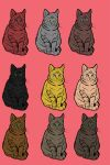 Cat adoptables by favingsforpoints