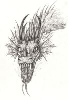 Dragon face-sketch by Spyrre