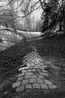 Lost Path by squirt86