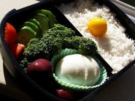 Quick and Simple Bento by LadySiha