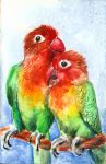 Parrots in love by FuzzyMaro
