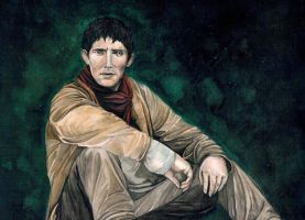 Merlin (Watercolor) by Alsdale