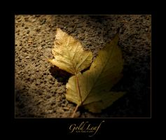 Gold Leaf - refined by sportygirl4114