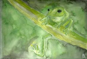 Frog in Green II by ashkara2001