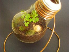 Light Bulb Terrarium morepics by Kosmu
