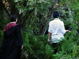 Sirius and James in the Forest by LarissaBlack