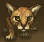 Scared Kitty by bawky
