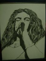 robert plant finished a while ago! by carriefawnsmom