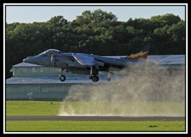 Harrier Down Draft by lizzyr