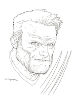 Old man Logan by aethibert