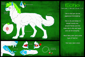 [Reference Sheet/COM] Echo by xBloodShadow