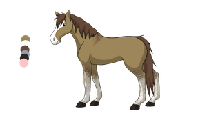My new horse character by Bruneydog