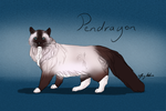 Pendragon by Meykka