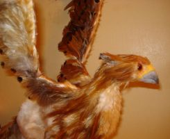 Copper Gryphon by BlackMage339