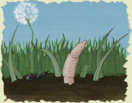 Ant and Worm colours by fourlegs