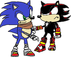 Sonic vs Shadow by tanlisette