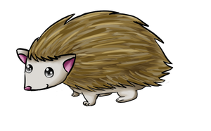 Hedgehog by NatsumeHirai