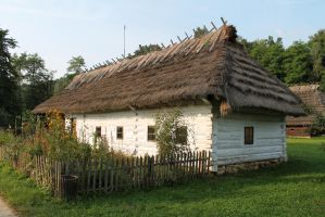 Cottage house 10 by Caltha-stock