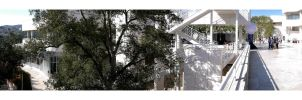 Getty Pano Oak-1 by makepictures