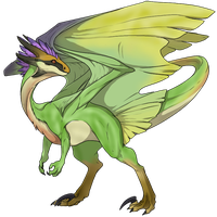 Wildclaw Male - Qurupeco by Draconargentum