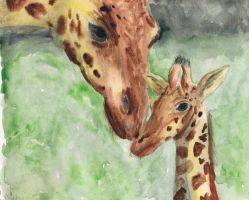 giraffes by Violently-Chaotic