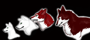 Evolution of Red by robotunicornattack07