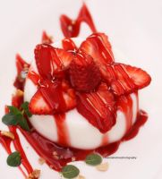 Panna Cotta with Strawberries by theresahelmer