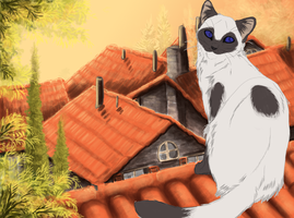 Wip Of This Cat On A Roof by CyanLights