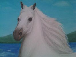 The Horse White 25 by eduaarti
