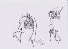 my horse Dorian. by wolf-child1995