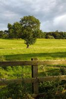 Northumberland Countryside by parallel-pam