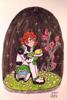 Happy Birthday Pidge! by n-trace