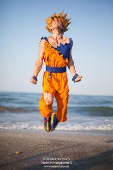 Goku Cosplay by Alexcloudsquall