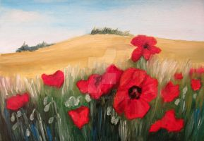 Poppies by lonarin