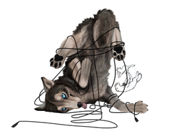 Commission: Athesis, wired by Roukara
