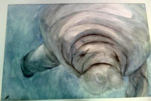 HOLY SEA COW by InfamouslyDorky