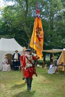 Cannock Chase Military History Weekend 2015 (18) by masimage