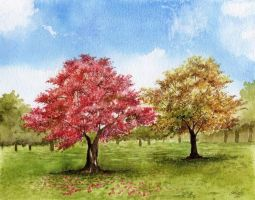 Maple Grove by aakritiarts