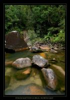 Finch Hatton Gorge, North QLD by eehan