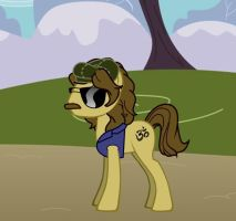 Magical Mystery Tour George Pony by TheOriginalBeatleBug