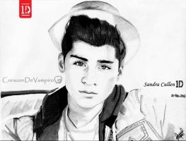 Zayn Take Me Home by CorazonDeVampiro