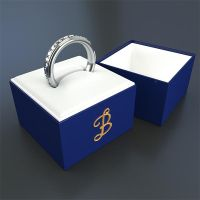 Ring and Ring box by paintevil