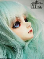 Luts Bory Faceup by WaterCube