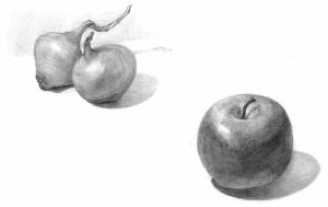 Apple and Onions by VLStone