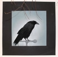 the raven by NaturesMate