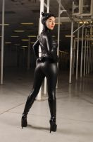 Cat Woman Unrestricted Stock by artmaniabychristine