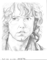 Pippin  From Lord Of The Rings by DarkLeeloo