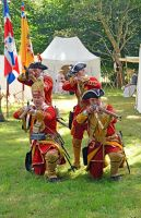 Cannock Chase Military History Weekend 2015 (24) by masimage