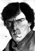 Benedict Cumberbatch by christeeeny
