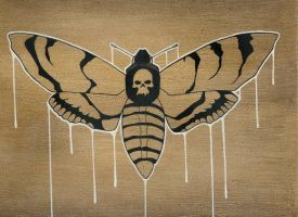 deaths head moth by inferes